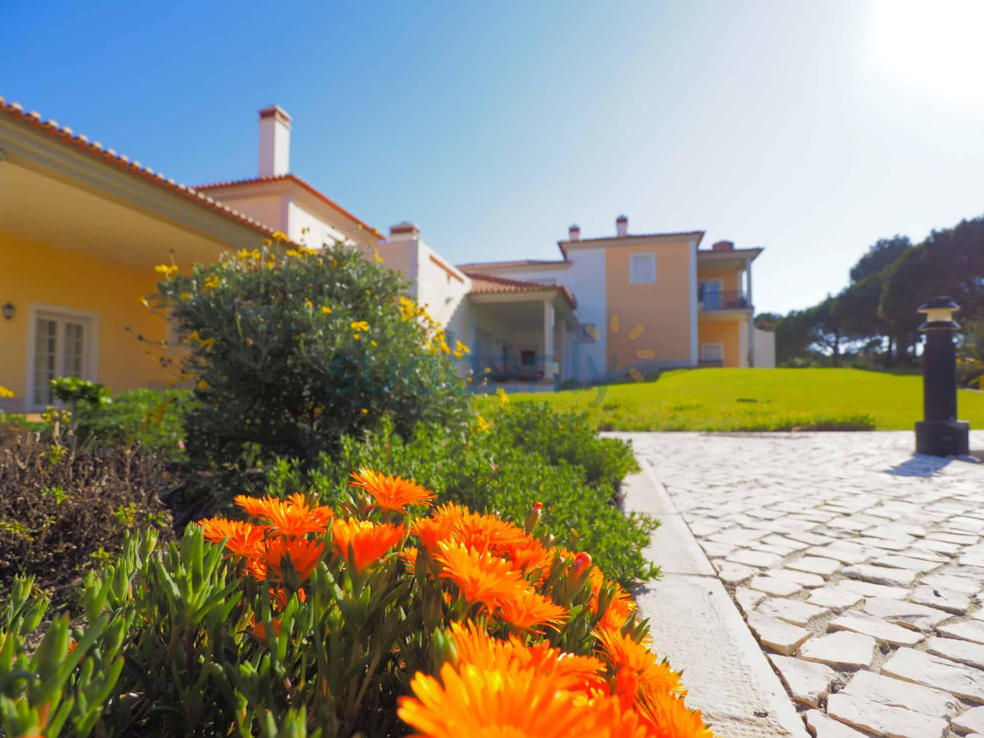 Holiday Rentals in Praia D'El Rey 351