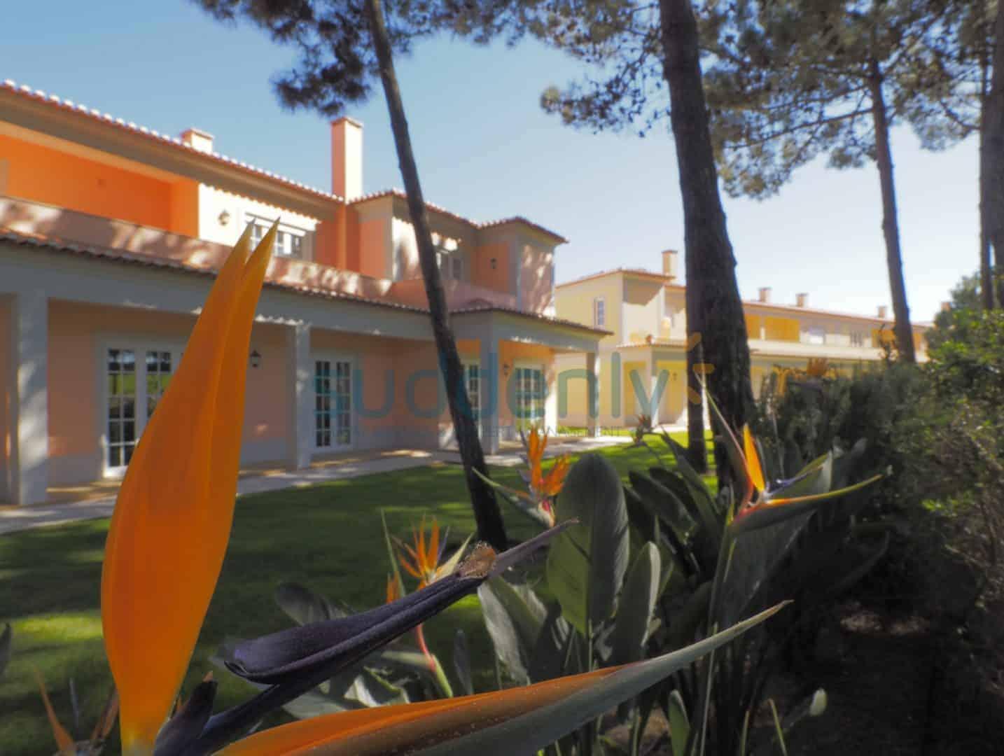 Holiday Rentals in Praia D'El Rey 259
