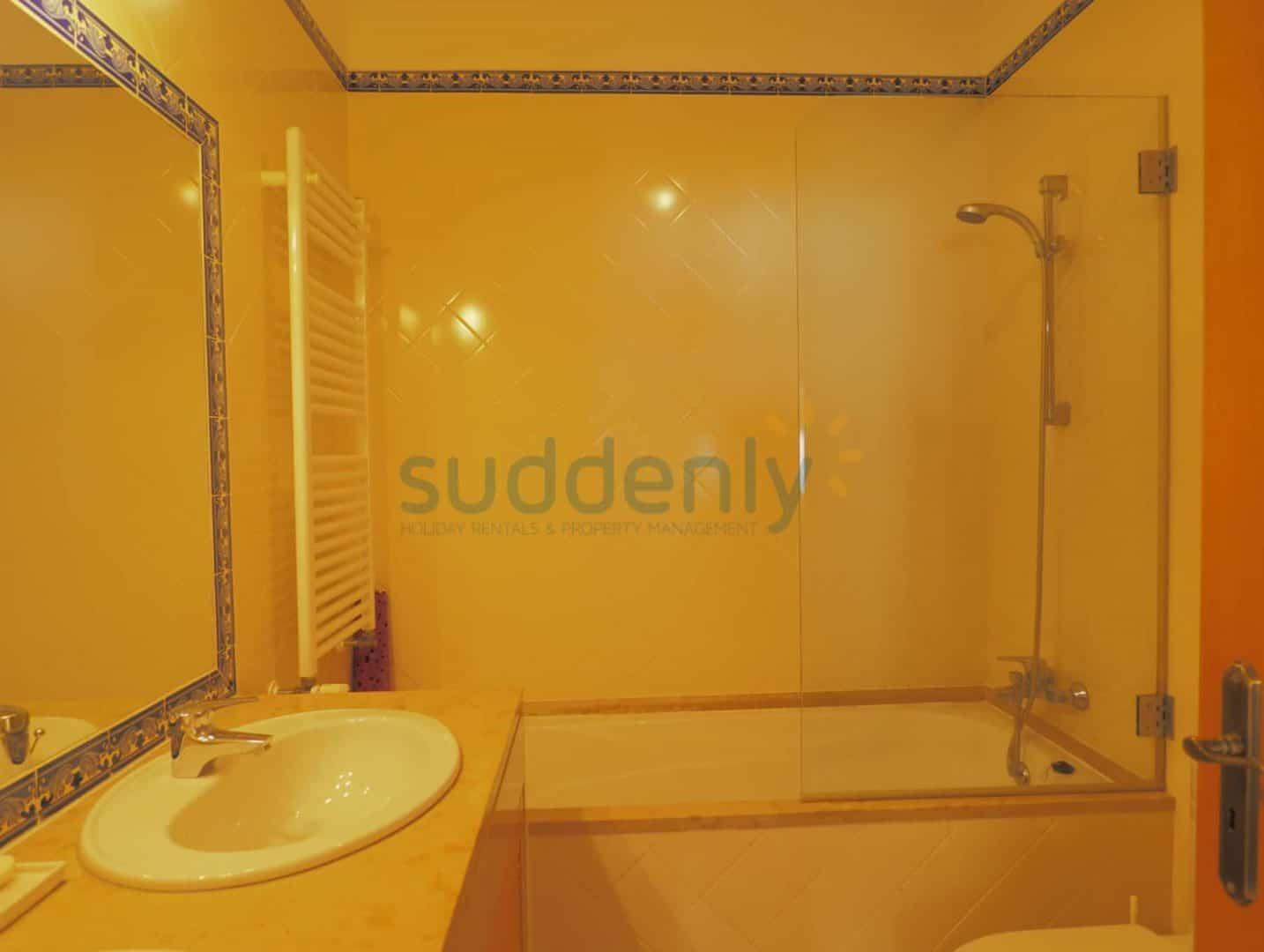 Apartamentos 295